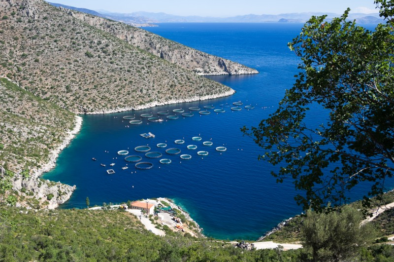 Four or Five Days Peloponnese Tour